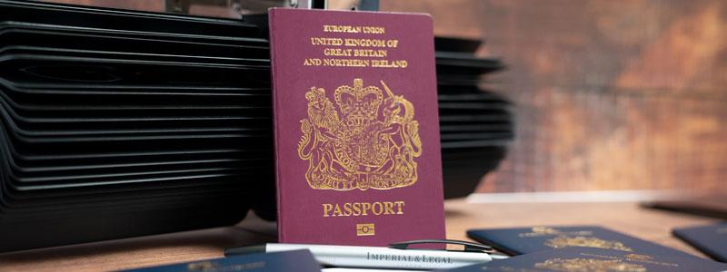 Виза Единственного представителя – Sole Representative Visa