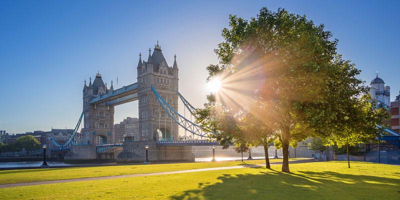 5 преимуществ британской визы Новатора